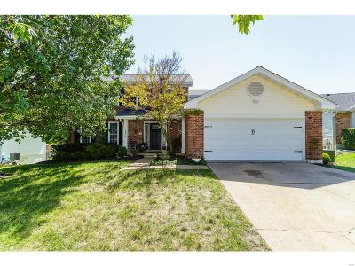 Single Family Home For Sale: 16314 Westglen Farms Court