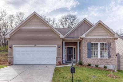 O'Fallon Single Family Home For Sale: 1 Devonshire @ Fox Ridge