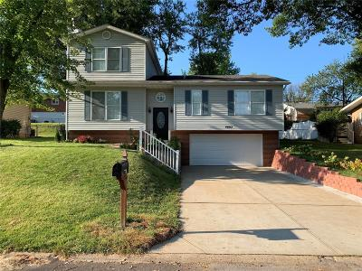 Single Family Home For Sale: 4002 Southern Aire