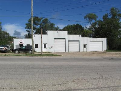 Crawford County Commercial For Sale: 268 East Pine Street
