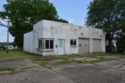 Palmyra MO Commercial For Sale: $69,500