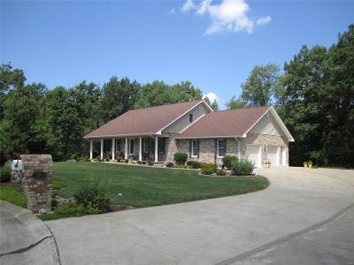 Bowling Green Single Family Home For Sale: 320 Hickman Drive