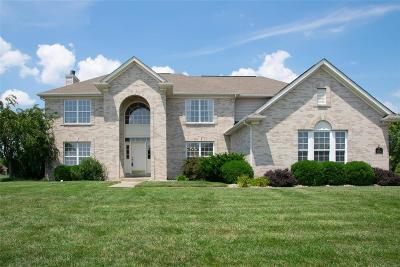 Swansea Single Family Home For Sale: 1501 Scoter