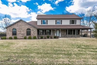 Swansea Single Family Home For Sale: 156 Lake Lorraine Drive