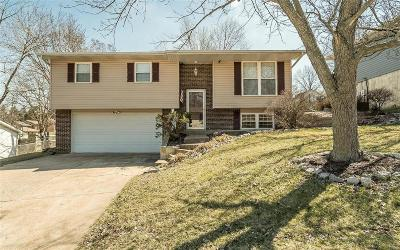 Arnold Single Family Home For Sale: 3876 Petrified Forest Drive