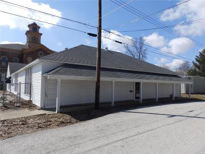 Commercial For Sale: 415 East Perry Street