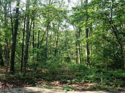 Warrenton Residential Lots & Land For Sale: 3 Clarks Hollow (Lot 3) Lane