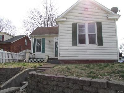 Belleville Single Family Home For Sale: 226 South 11th Street
