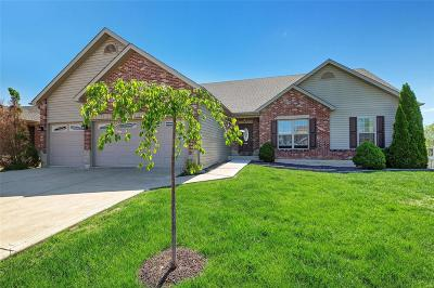 Wentzville Single Family Home For Sale: 807 Railway Circle