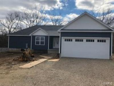 Bonne Terre Single Family Home For Sale: 902 Grove