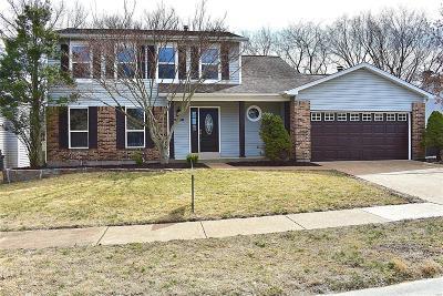 Single Family Home For Sale: 3030 Arrowhead Point Drive
