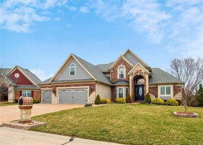 Dardenne Prairie Single Family Home For Sale: 123 Sterling Crossing