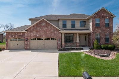 Caseyville Single Family Home For Sale: 1016 Pebble Beach Drive