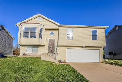 Cedar Hill Single Family Home Active Under Contract: 6272 Twin Springs Boulevard