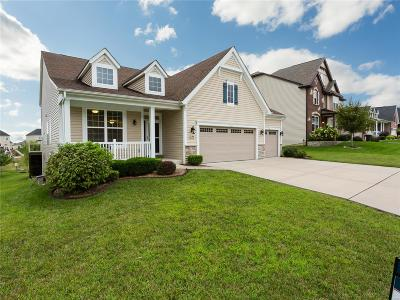 St Peters Single Family Home For Sale: 244 Dogwood Meadow Ct.