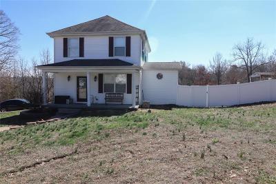 De Soto Single Family Home For Sale: 405 Vineland School Road