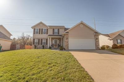 Fairview Heights Single Family Home For Sale: 966 Clemson Avenue
