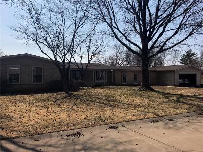 Chesterfield Single Family Home For Sale: 342 Renaldo Drive