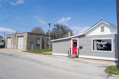 Granite City Commercial For Sale: 2901 Iowa Street