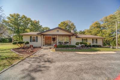 Millstadt Single Family Home For Sale: 8853 State Route 163