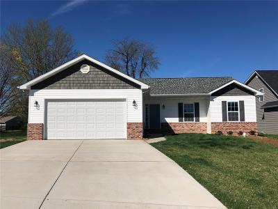 Caseyville Single Family Home For Sale: 7953 Laurel Flats Drive