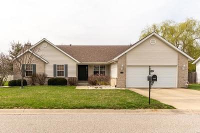 Fairview Heights Single Family Home For Sale: 5225 Depaul Drive