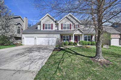 O'Fallon Single Family Home For Sale: 900 Bentley Park