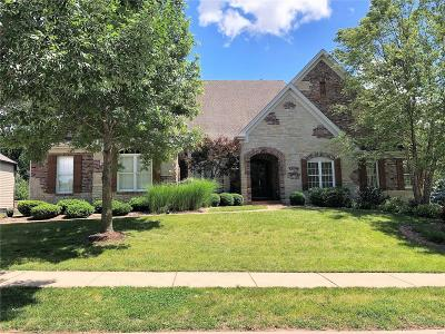 St Charles Single Family Home For Sale: 2374 Spring Mill Estates Drive