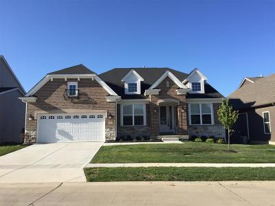 O'Fallon Single Family Home For Sale: 206 Montrose Court