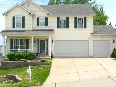 Fenton Single Family Home For Sale: 876 Shadow Pine