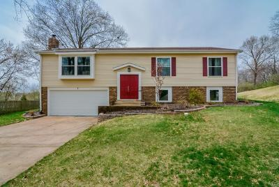 Single Family Home For Sale: 9 Treehill Court
