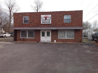 Granite City Commercial For Sale: 4124 Pontoon