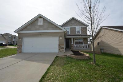 Wentzville Single Family Home For Sale: 11 Brookfield Court