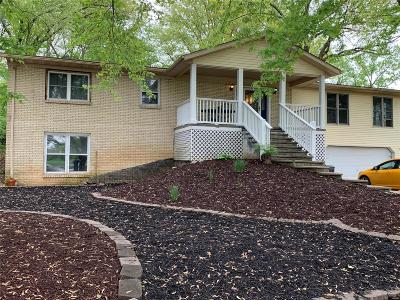Millstadt Single Family Home For Sale: 8300 State Route 163