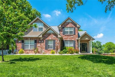 St Louis Single Family Home For Sale: 9445 Crockett Drive