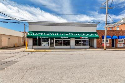 Commercial For Sale: 13 North Church Street