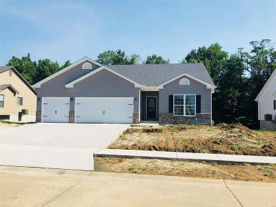 Lincoln County, Warren County Single Family Home Active Under Contract: 483 Indian Lake Drive