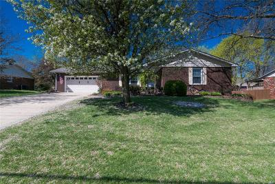 Glen Carbon Single Family Home For Sale: 282 North Meridian