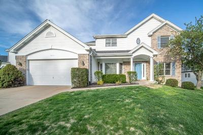 Chesterfield Single Family Home For Sale: 16818 Ashberry Circle Drive