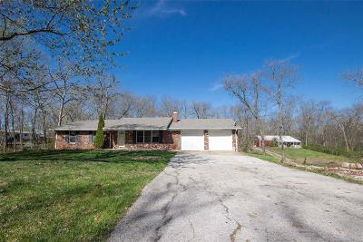 Lincoln County, Warren County Single Family Home For Sale: 27201 South Stracks Church