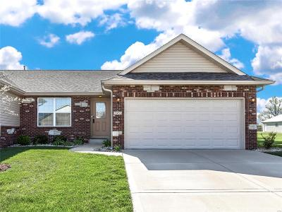 Maryville Single Family Home For Sale: 2053 Briarbend Court