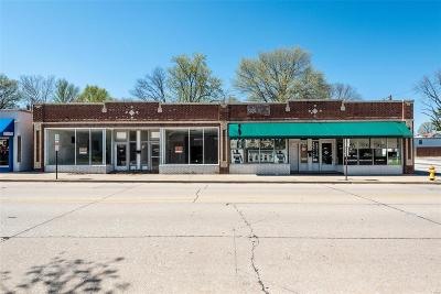Belleville Commercial For Sale: 1119 East Main Street