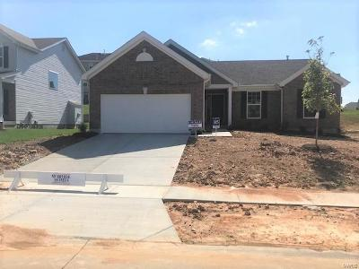 Wentzville Single Family Home For Sale: 245 Turning Mill Drive