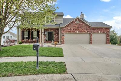 Edwardsville Single Family Home For Sale: 3402 Antietam Court