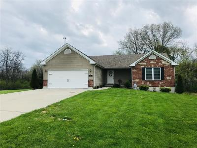 Lincoln County Single Family Home For Sale: 80 Danny