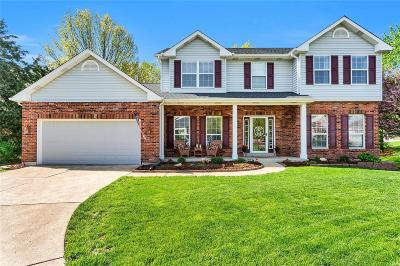 St Louis County Single Family Home For Sale: 878 Mallard Woods