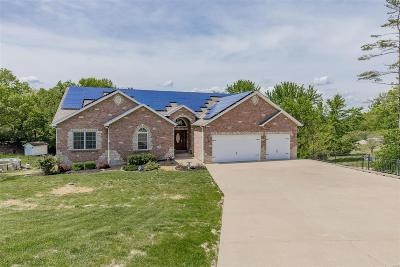 St Louis Single Family Home For Sale: 3603 Gwenmill Drive