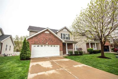 Wentzville Single Family Home For Sale: 238 Stone Run Boulevard