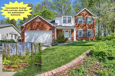 Single Family Home Active Under Contract: 229 Belden Drive