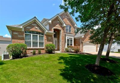 St Louis County Single Family Home For Sale: 617 Palace Place Court